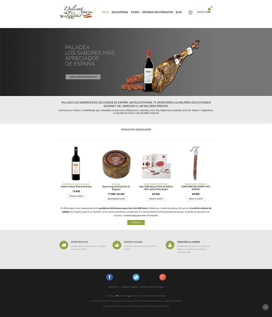 Wellaggio-diseño-web-valencia-delicatspain-2018-08-16-17_13_08